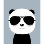 """Panda plakat, panda med """"raybans"""""""