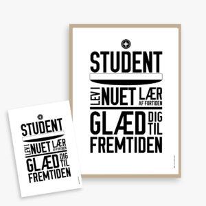 studentergave, student