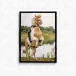 plakat med foto af hest til hestepigen